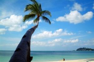 シンガポールから約60分で行ける南国リゾート?! 〜「ビンタン島」でリゾート気分を味わおう!〜