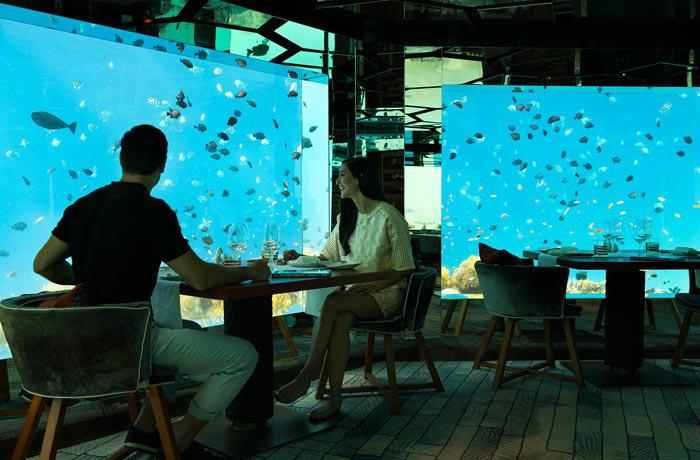 アナンタラ・キハヴァ 水族館にいるかのような水中レストラン室内