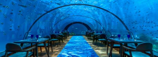 水中レストランについて