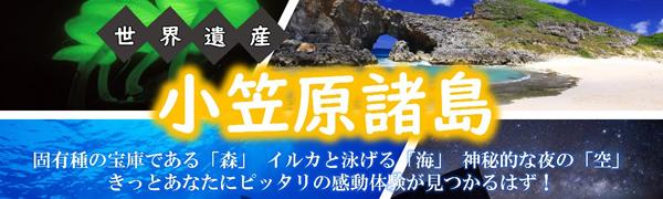 小笠原諸島への旅